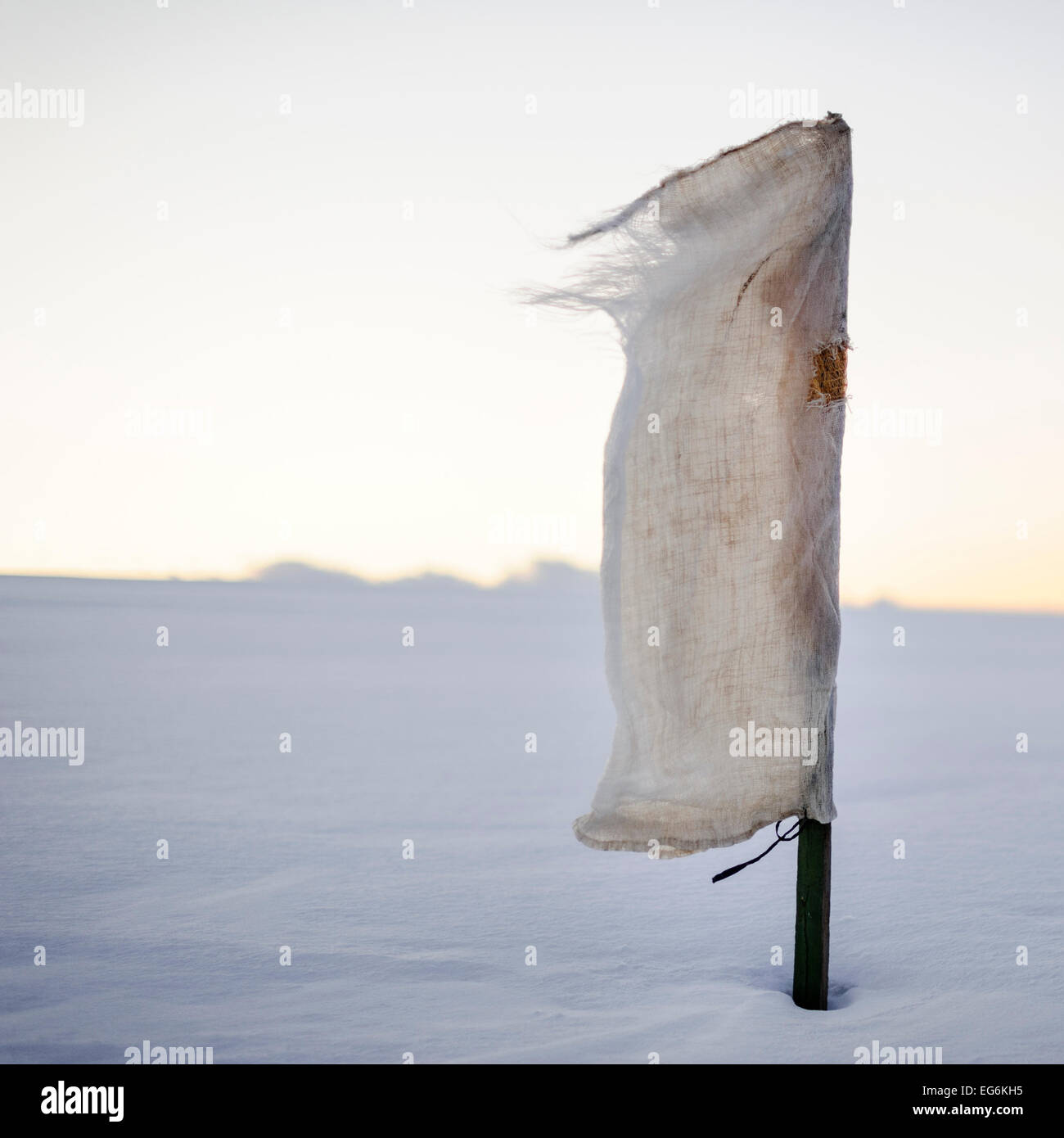Scarecrow canvas flag in snow field in wind. - Stock Image