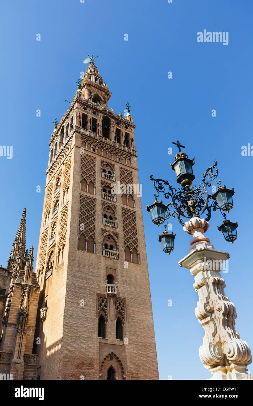 Seville, Seville Province, Andalusia, southern Spain.  The Giralda tower seen from the Plaza de la Alianza. - Stock Image