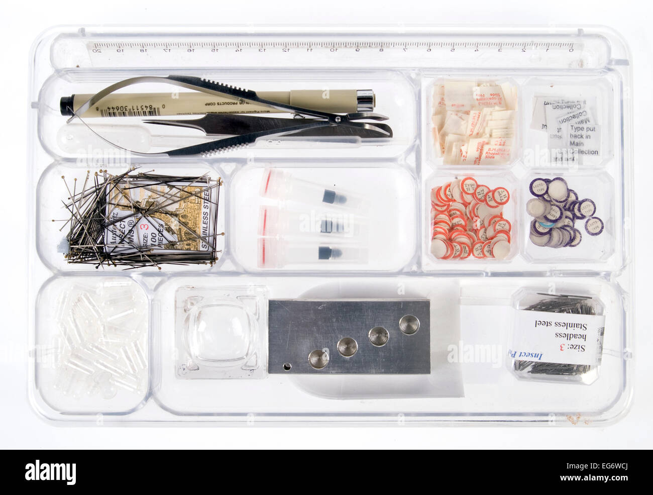 Tray of entomology equipment - Stock Image