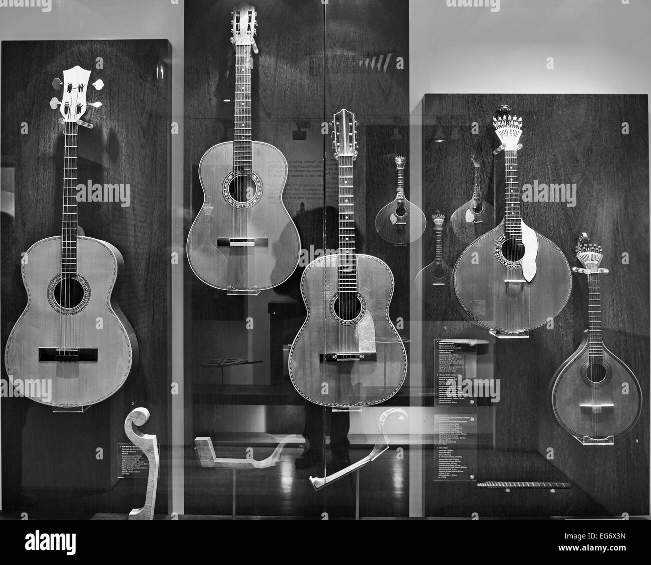 Portugal, Lisbon: Exposition of models of Fado guitars  in the Museum of Fado as black and white version - Stock Image