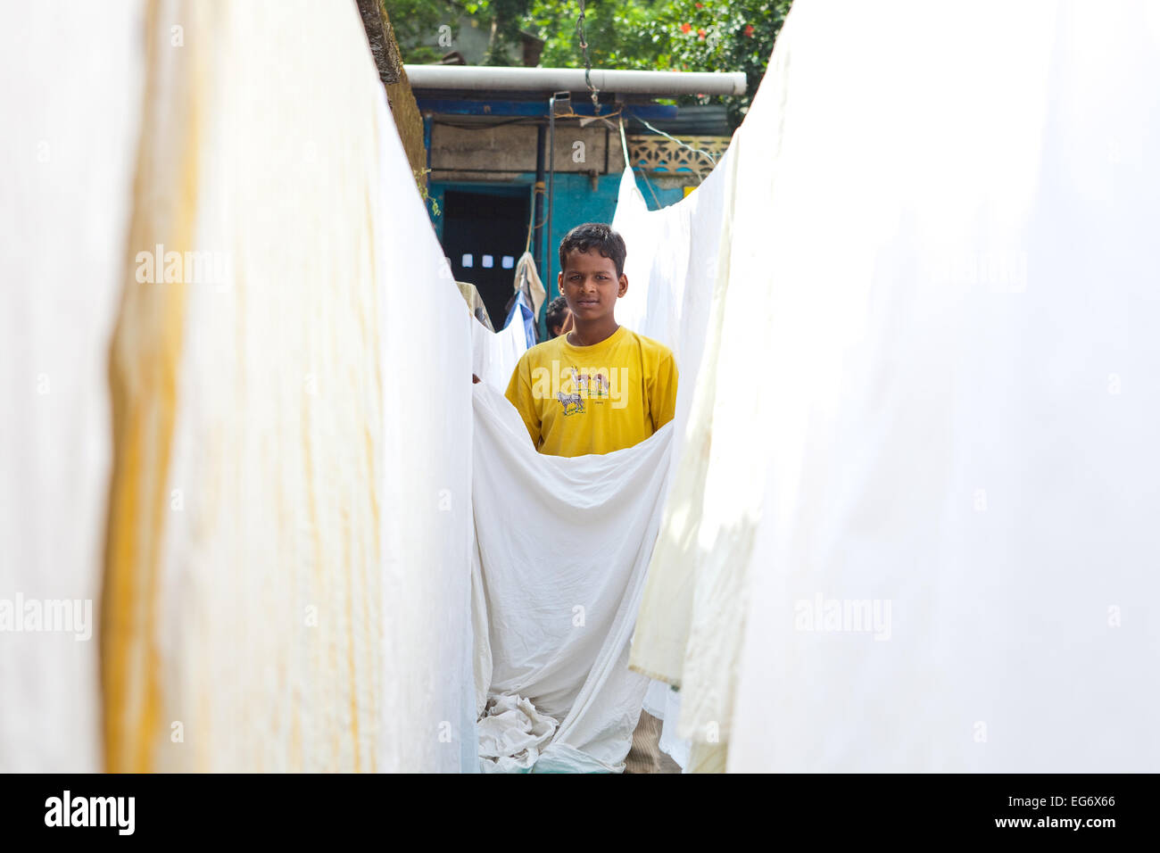 'Dhobi wallah' or Laundry boy - hanging out freshly washed sheets to dry in the Indian sun, Kumily, Southern - Stock Image