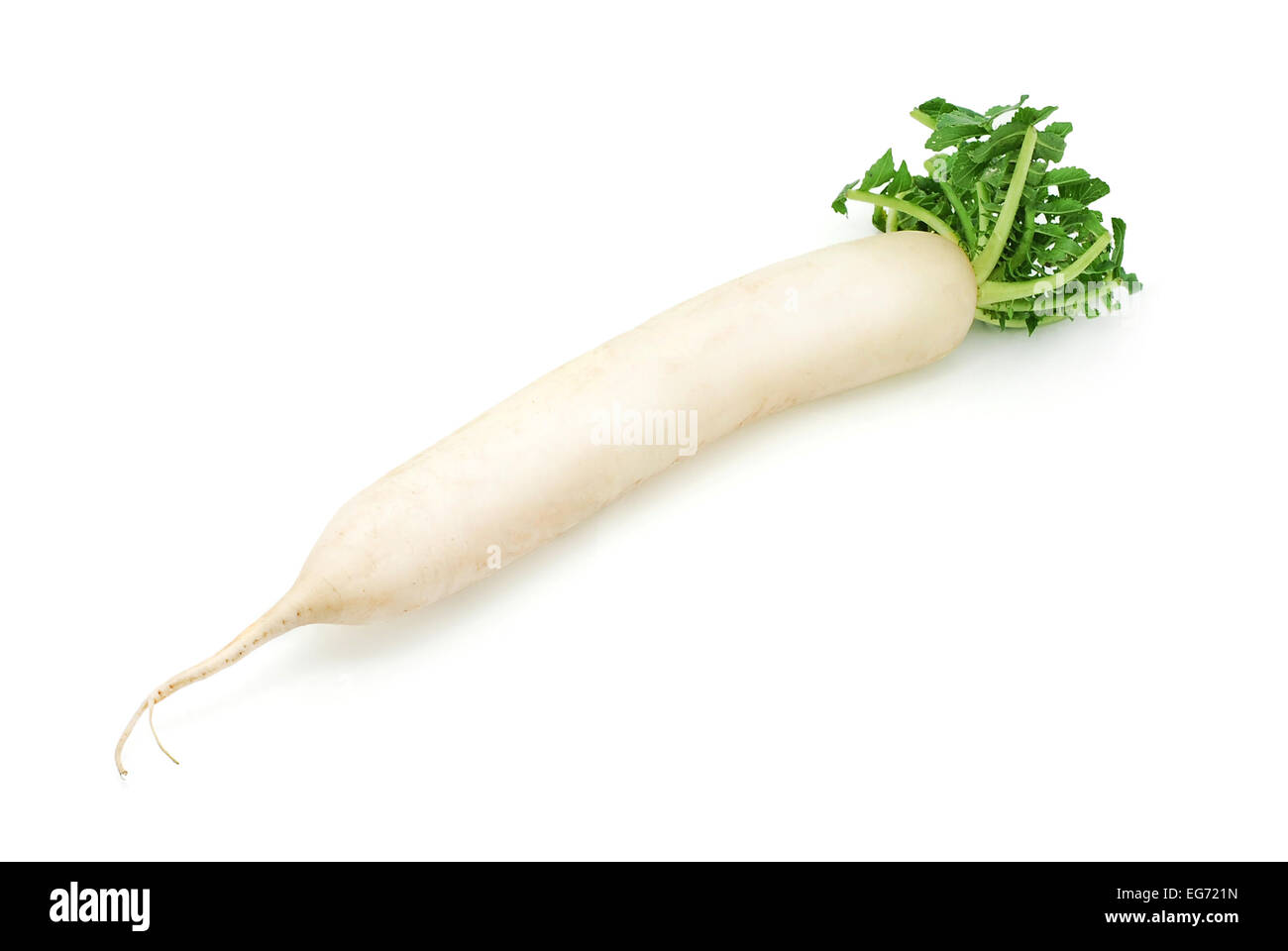 long white radish on white Stock Photo