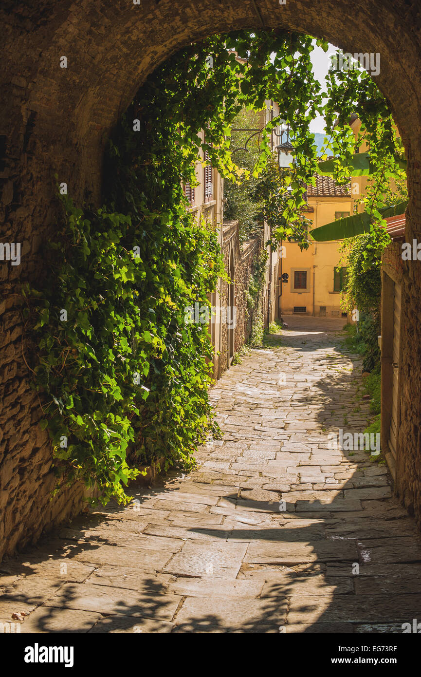 Old streets of greenery a medieval Tuscan town. - Stock Image