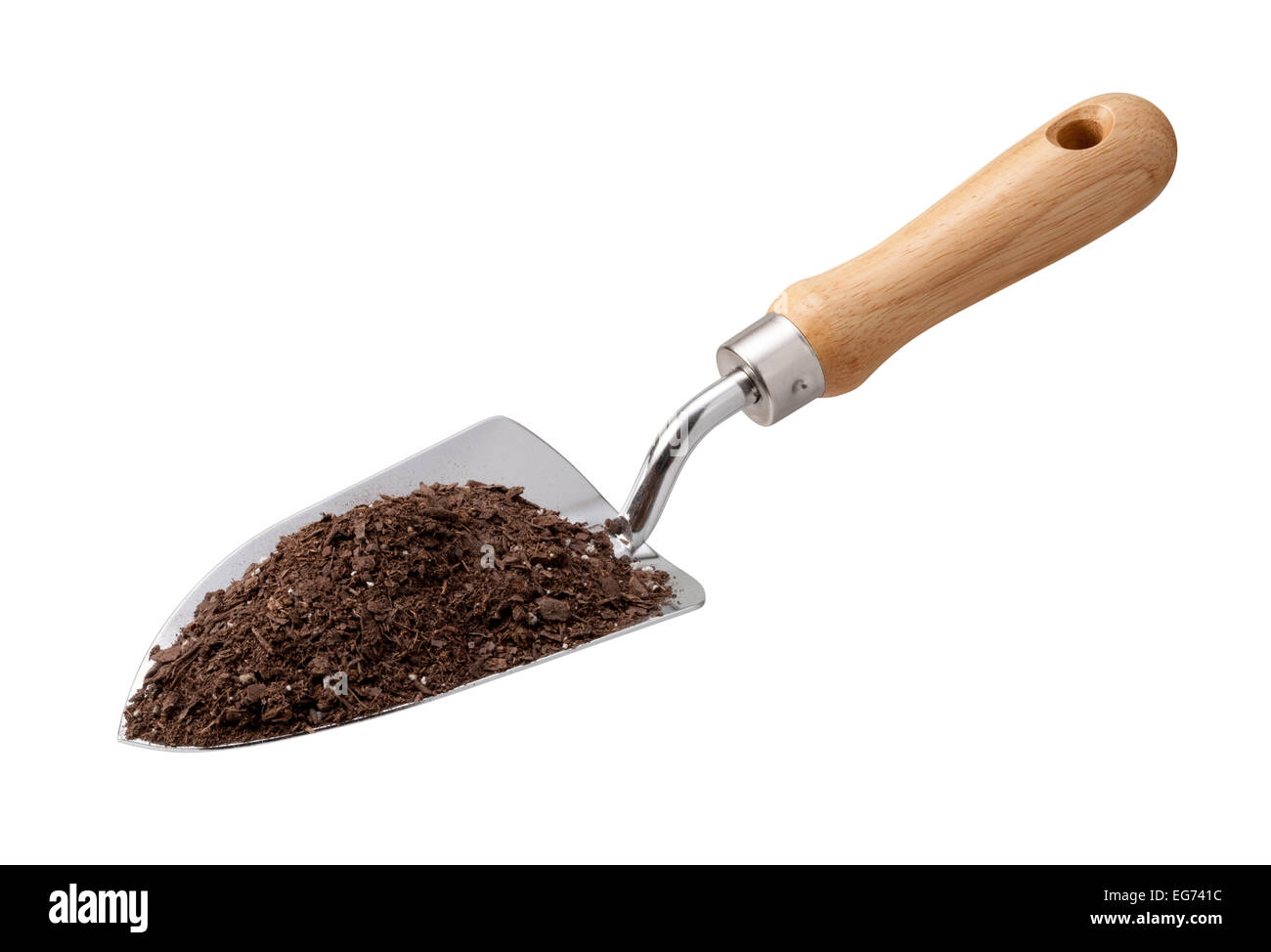 Garden Trowel with Potting Soil isolated on white. - Stock Image