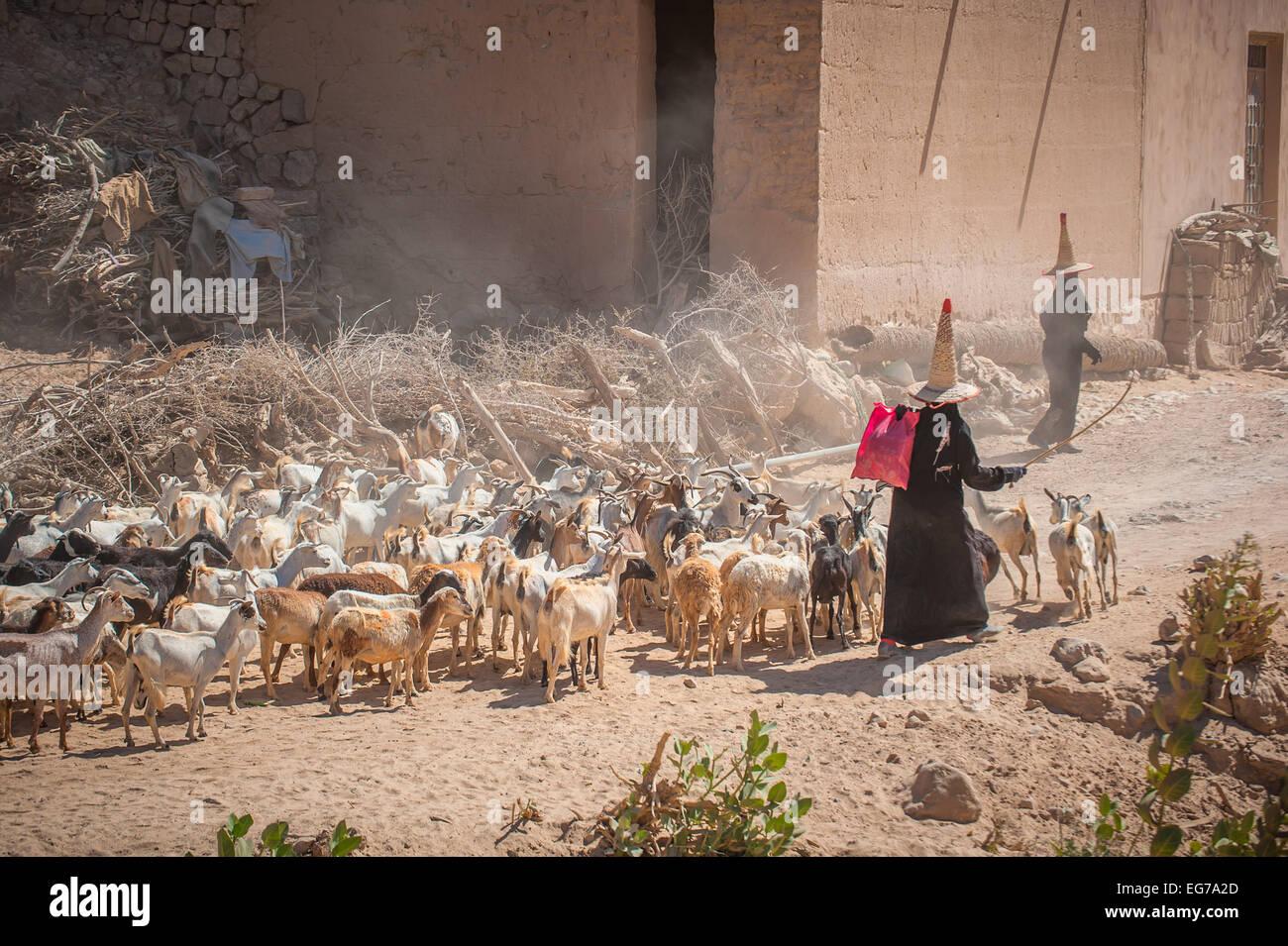HADRAMAUT, YEMEN - February, 22: Hadramaut 'witches', yemeni women in traditional clothes at Hadramaut provence, - Stock Image