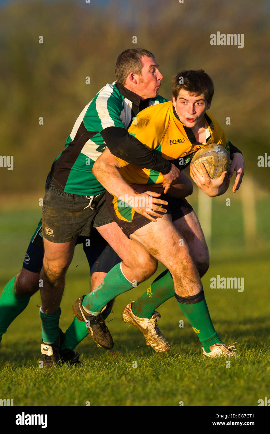Rugby, player being tackled. - Stock Image