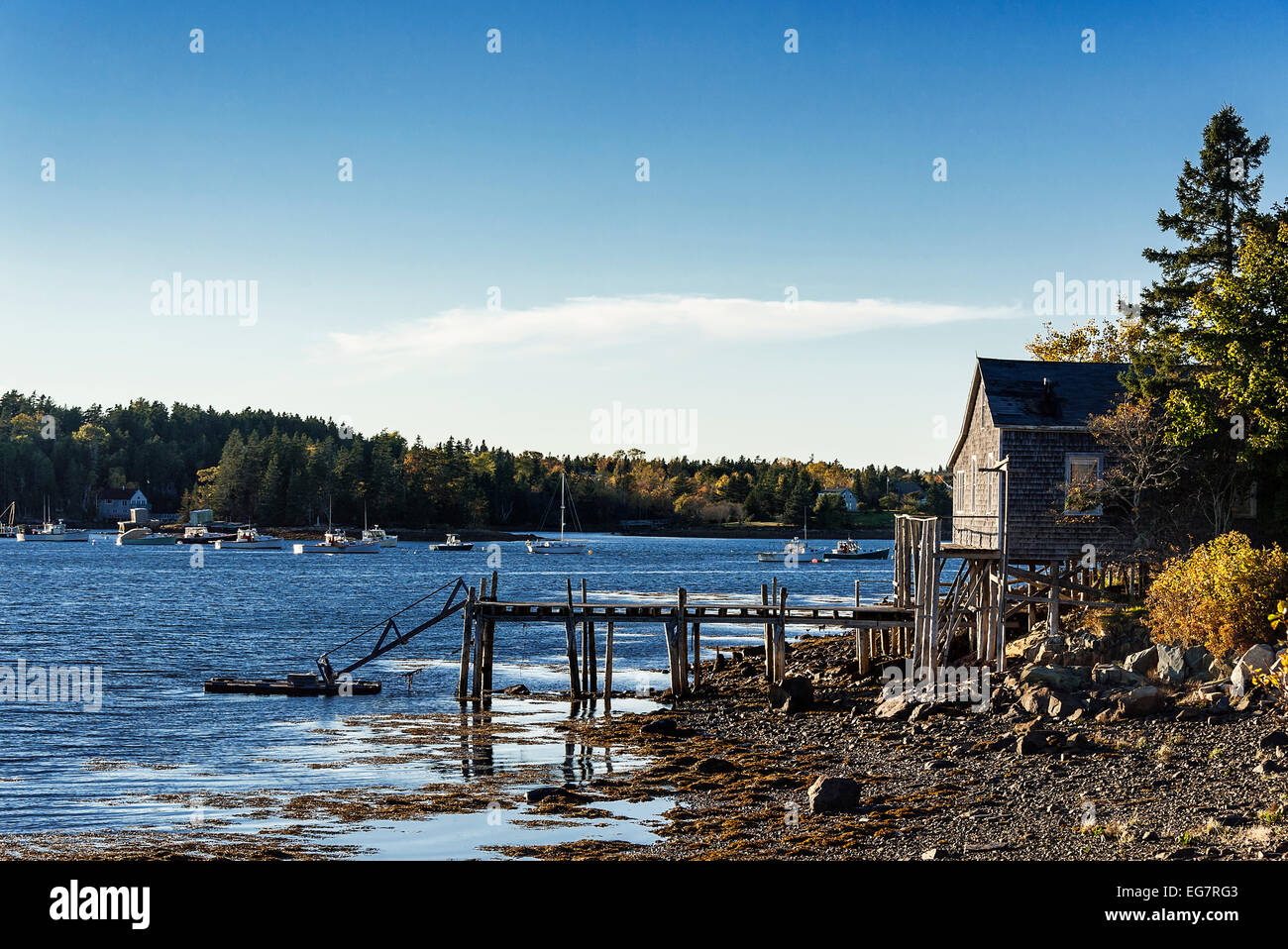 Coastal shack, Mt Desert Island, Maine, USA Stock Photo