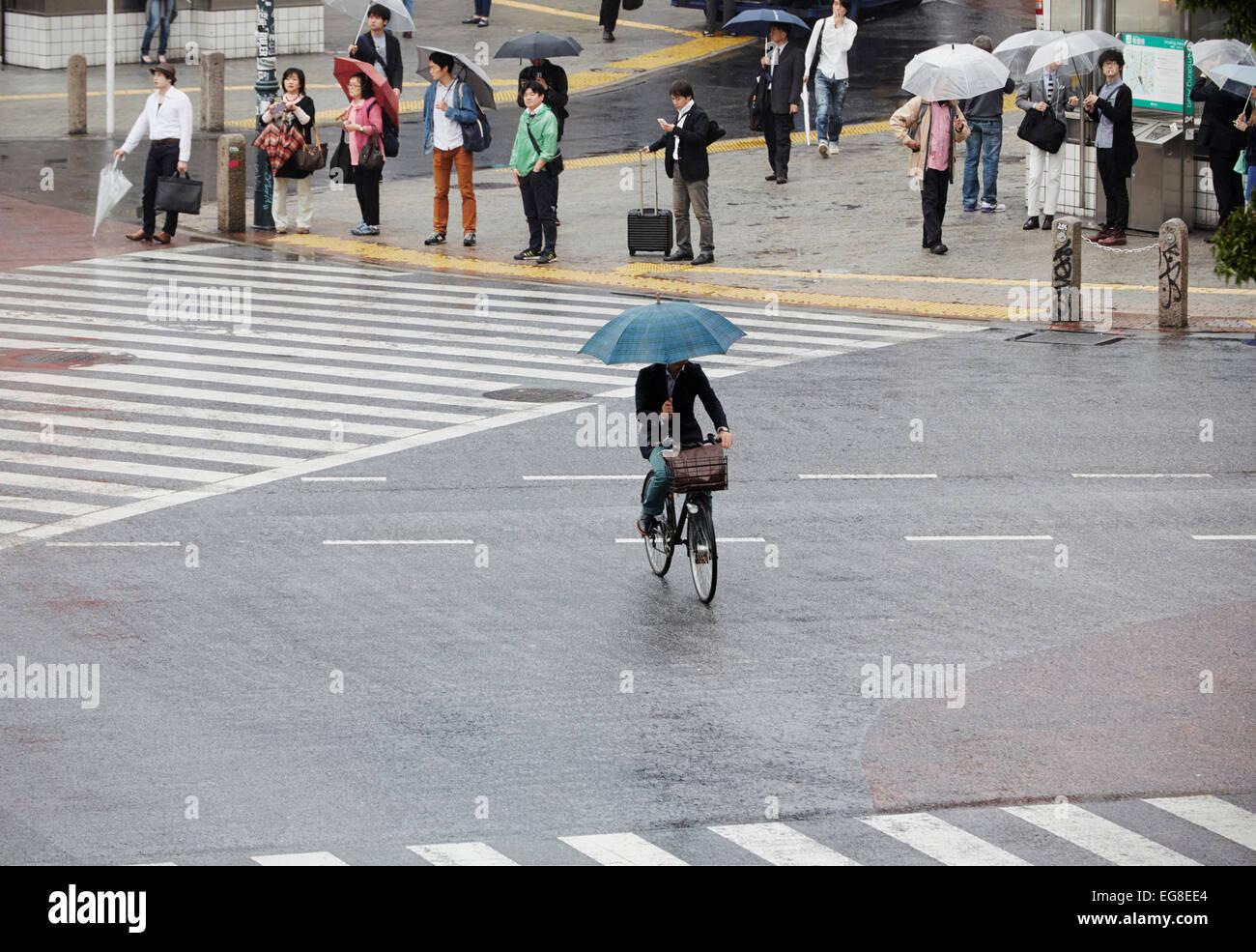 Cyclist with umbrellas on Shibuya scramble crossing, Shibuya, Tokyo, Japan - Stock Image