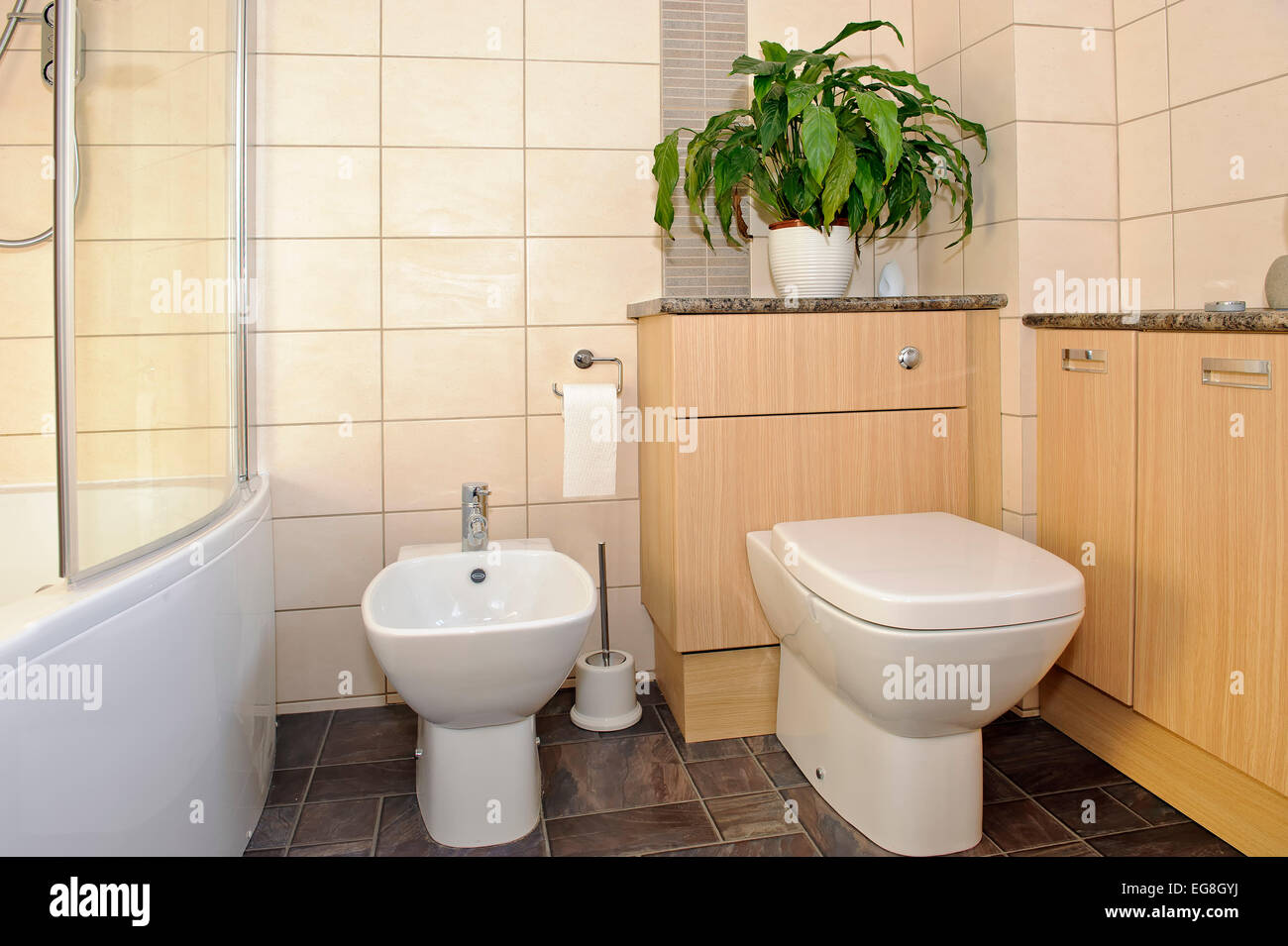 Bathroom Modern Toilet Bidet Stock Photos Bathroom Modern Toilet