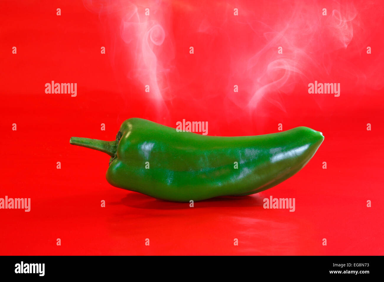 A spicy green chile from the Hatch Valley in New Mexico - Stock Image