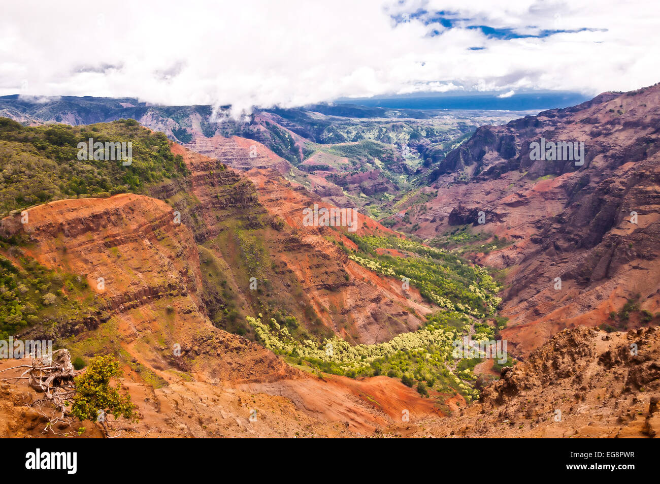 Amazing Waimea Canyon in Kauai, Hawaii Islands - Stock Image