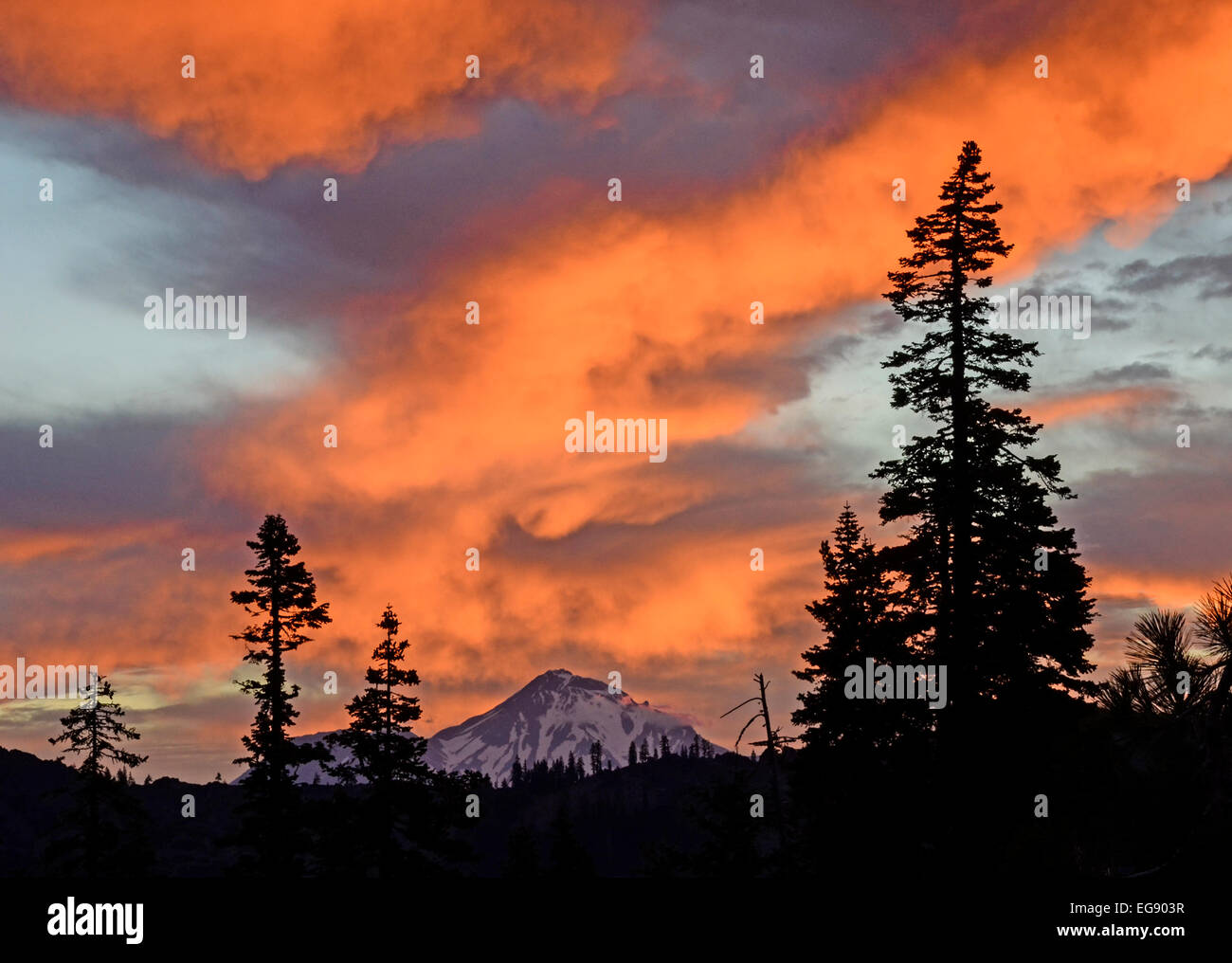 Mount Shasta dawn beauty. - Stock Image