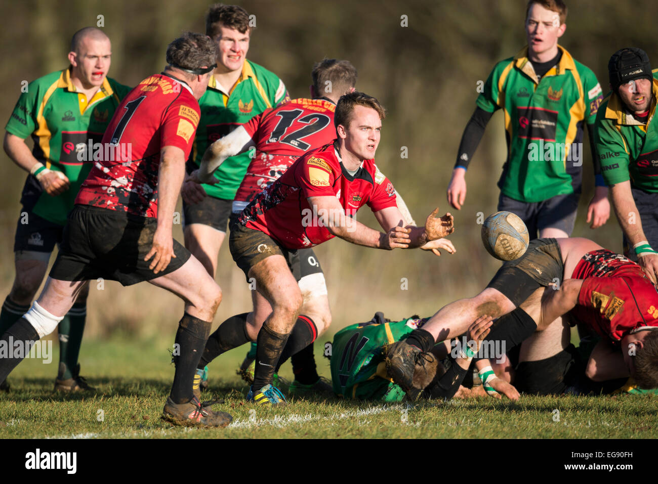 Rugby, scrum half in action. - Stock Image