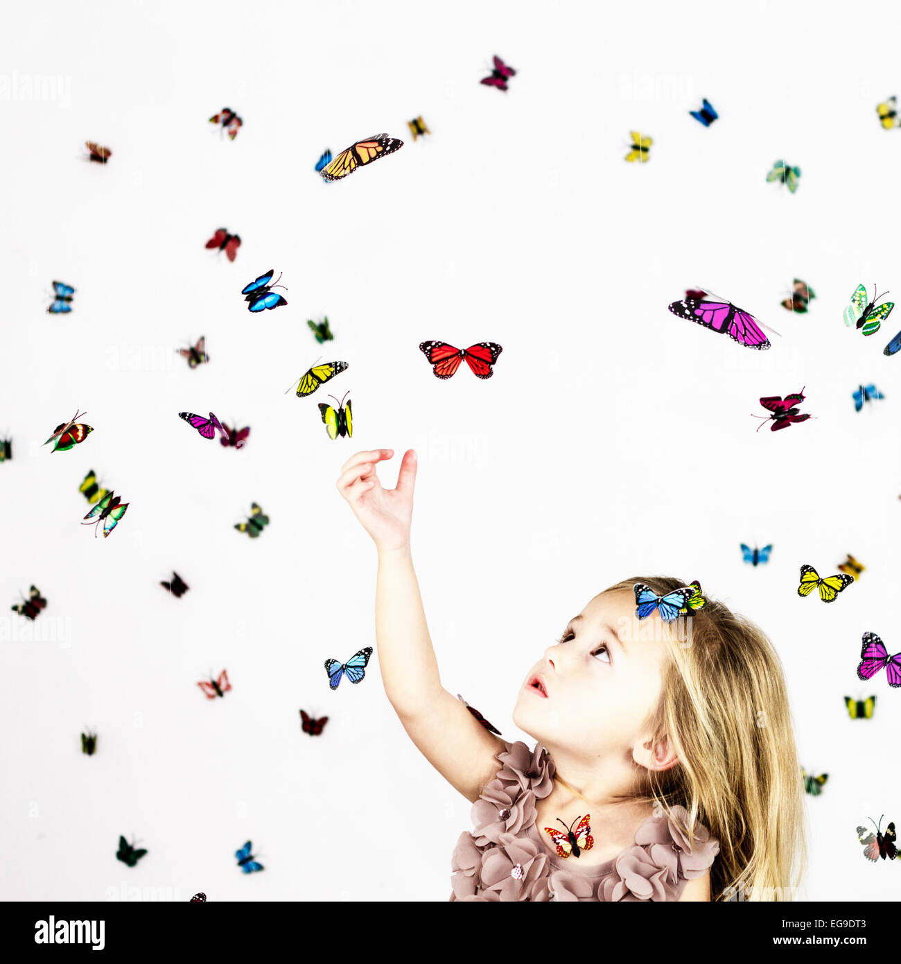 Girl with butterflies on white Stock Photo