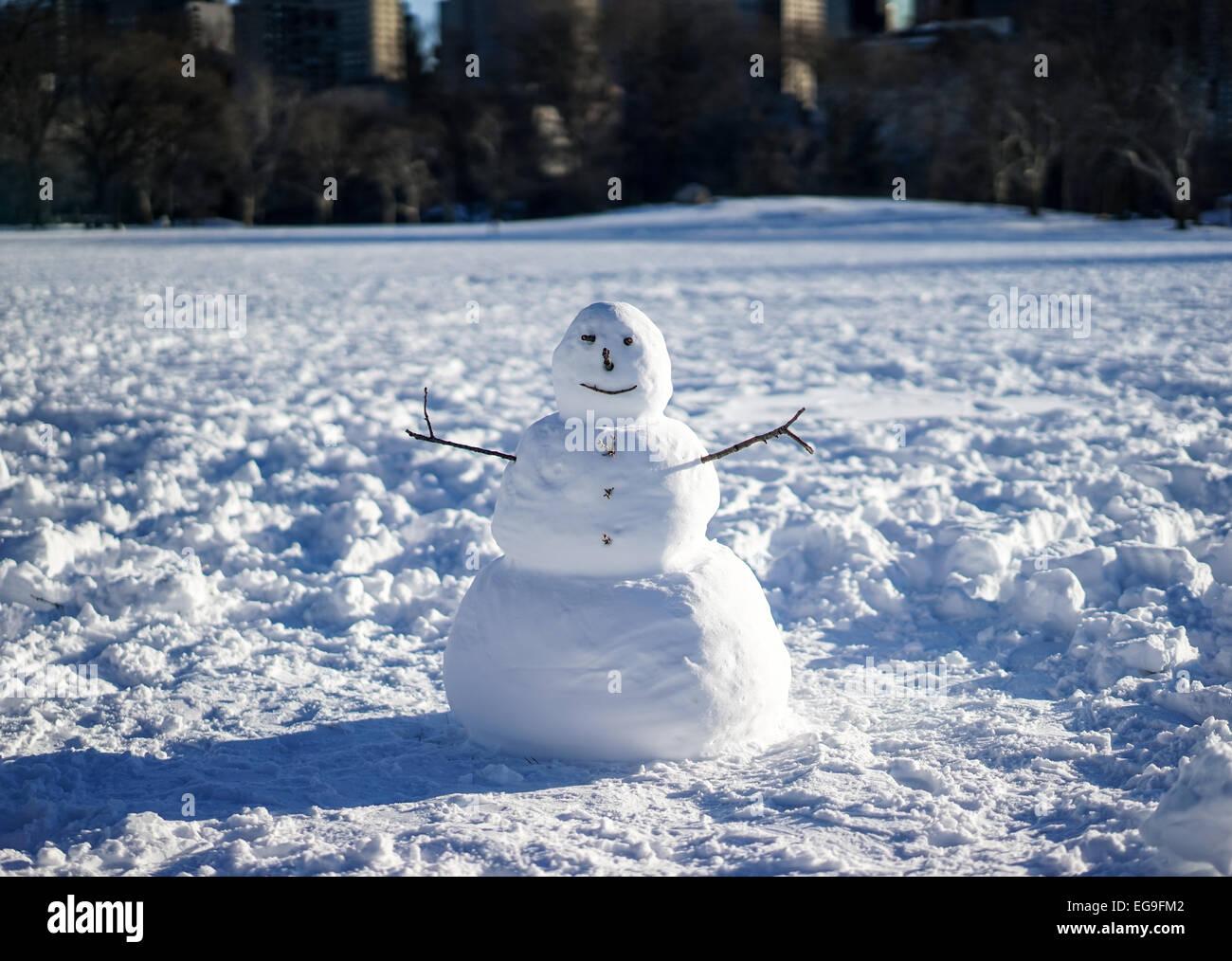 Snowman in field - Stock Image
