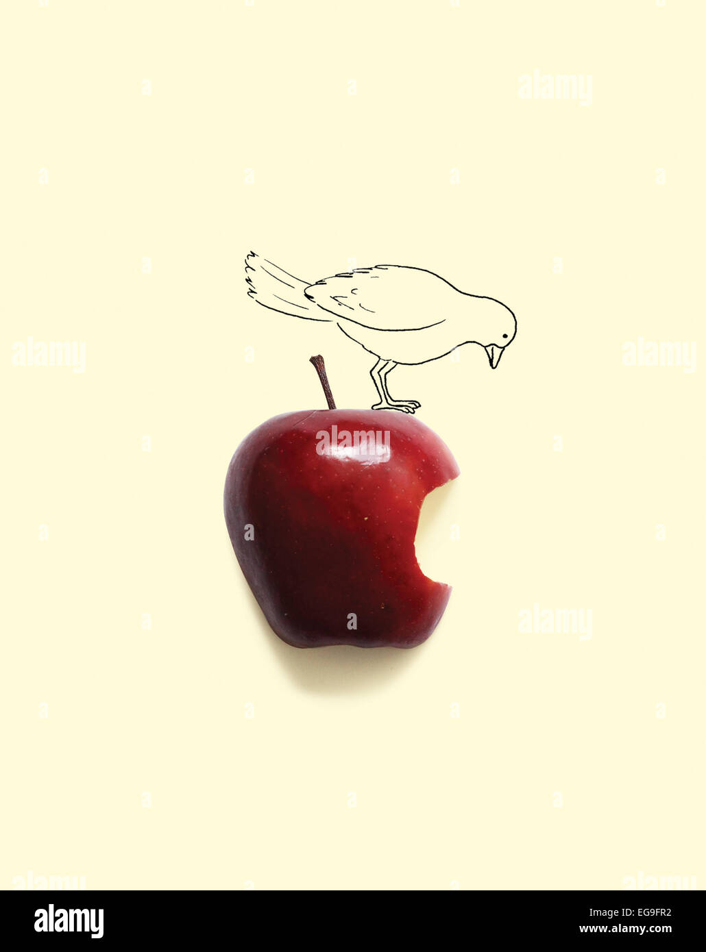 Conceptual bird on apple with a bite missing - Stock Image