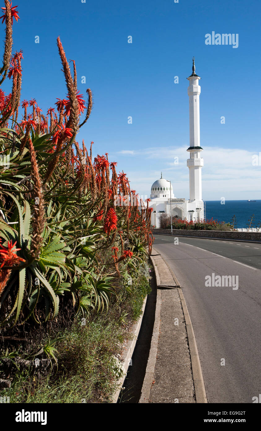Mosque of the Custodian of the Two Holy Mosques, Europa Point, Gibraltar, British overseas territory in southern - Stock Image