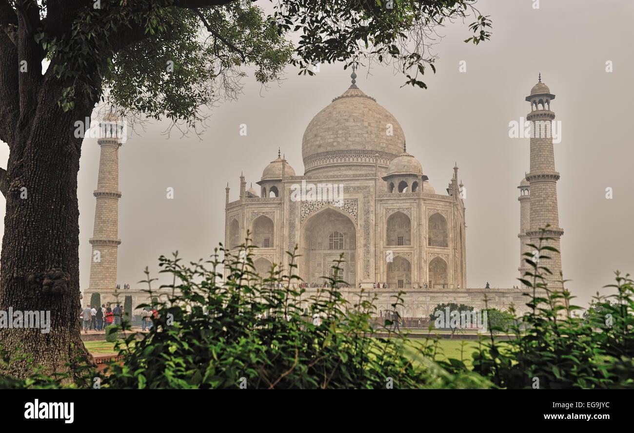 Taj Mahal in frame - Stock Image