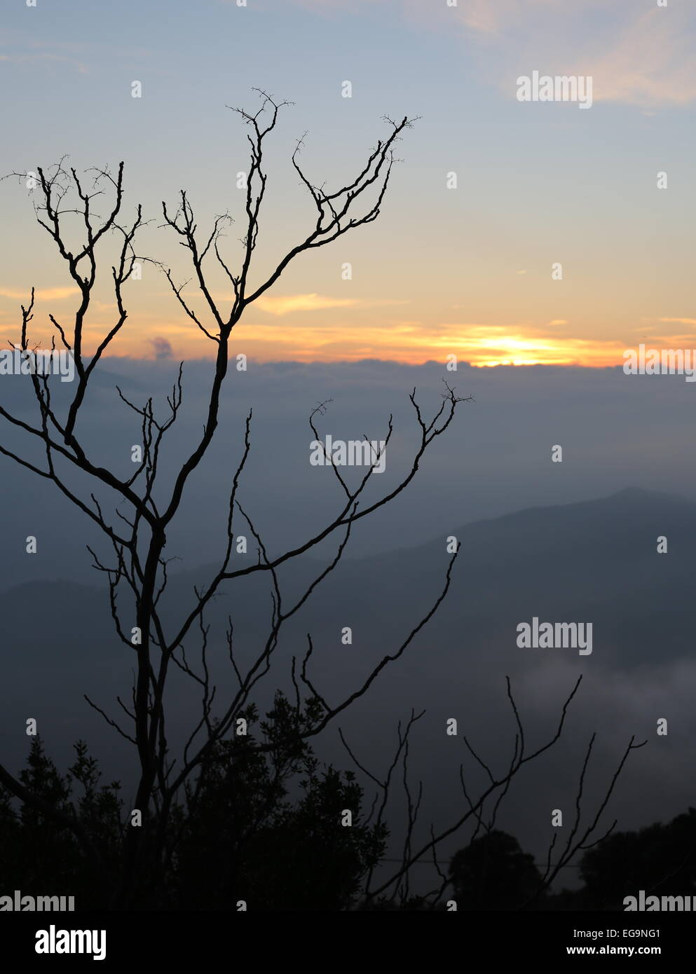 valley mists sierra nevada - Stock Image
