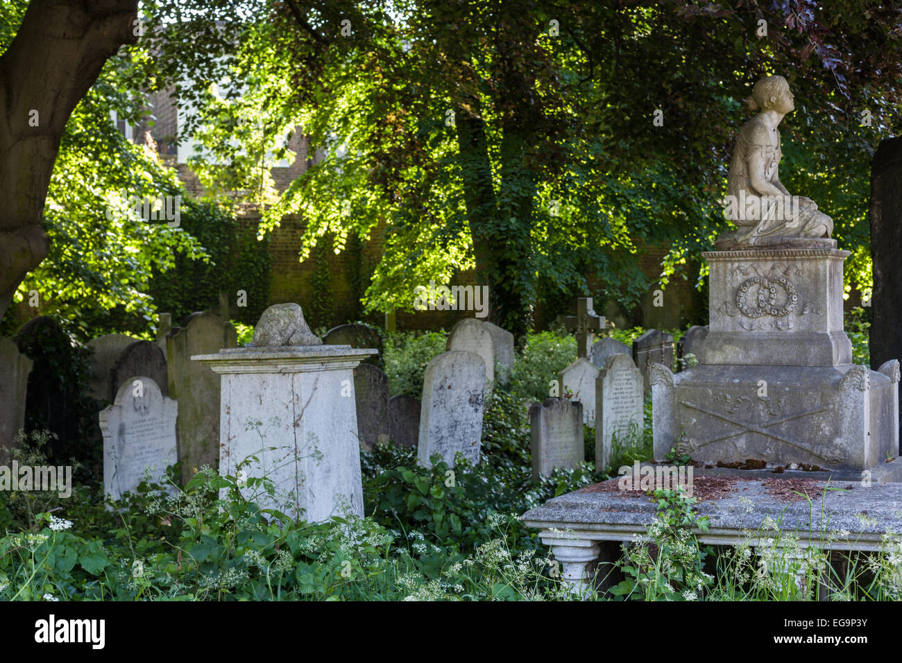 Brompton Cemetery, located near Earl's Court in West London, England. It is managed by The Royal Parks - Stock Image