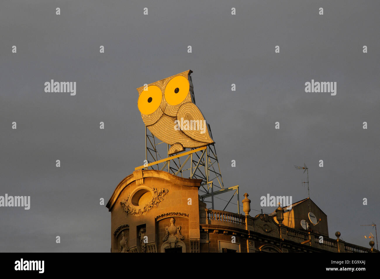 owl, neon sign, advertising, - Stock Image