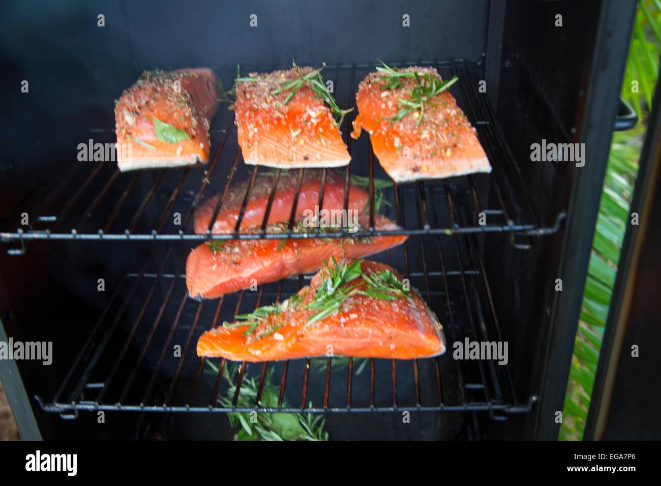 King Salmon in a smoker - Stock Image
