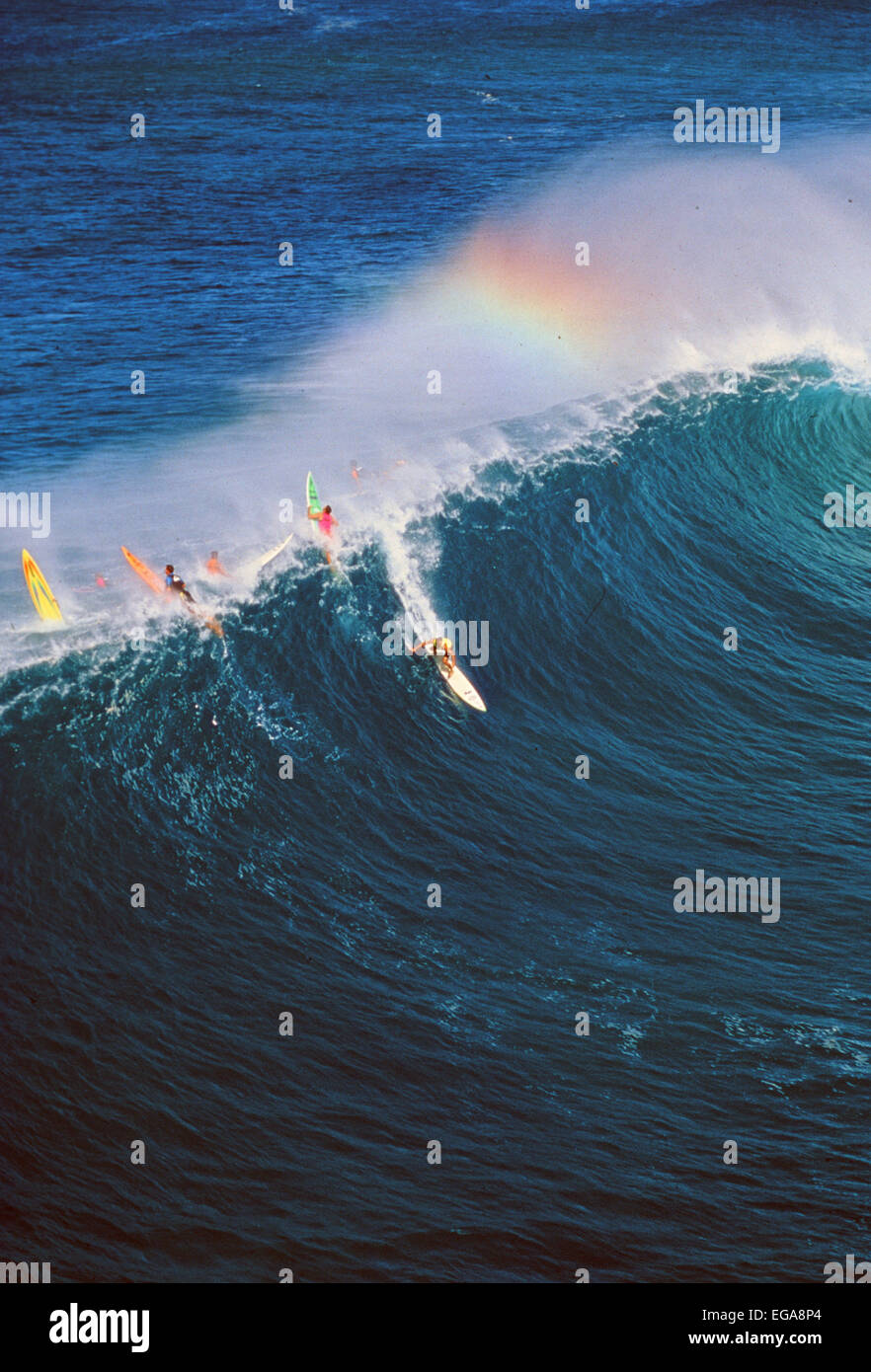 Surfing, North Shore, Oahu, Hawaii, Editorial use only no model release - Stock Image