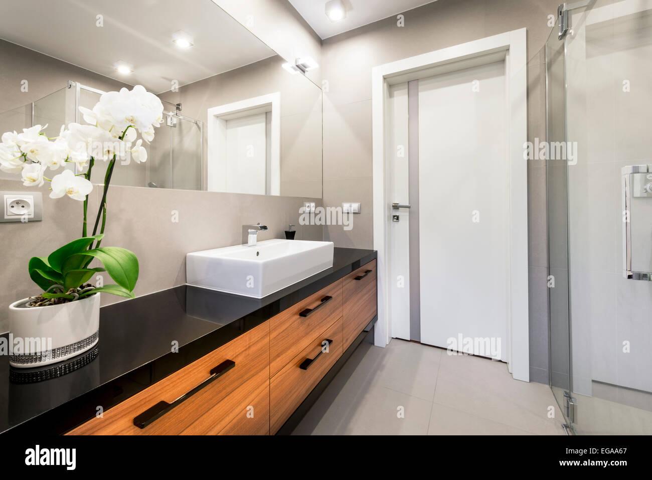 . Modern luxury bathroom interior design Stock Photo  78903503   Alamy