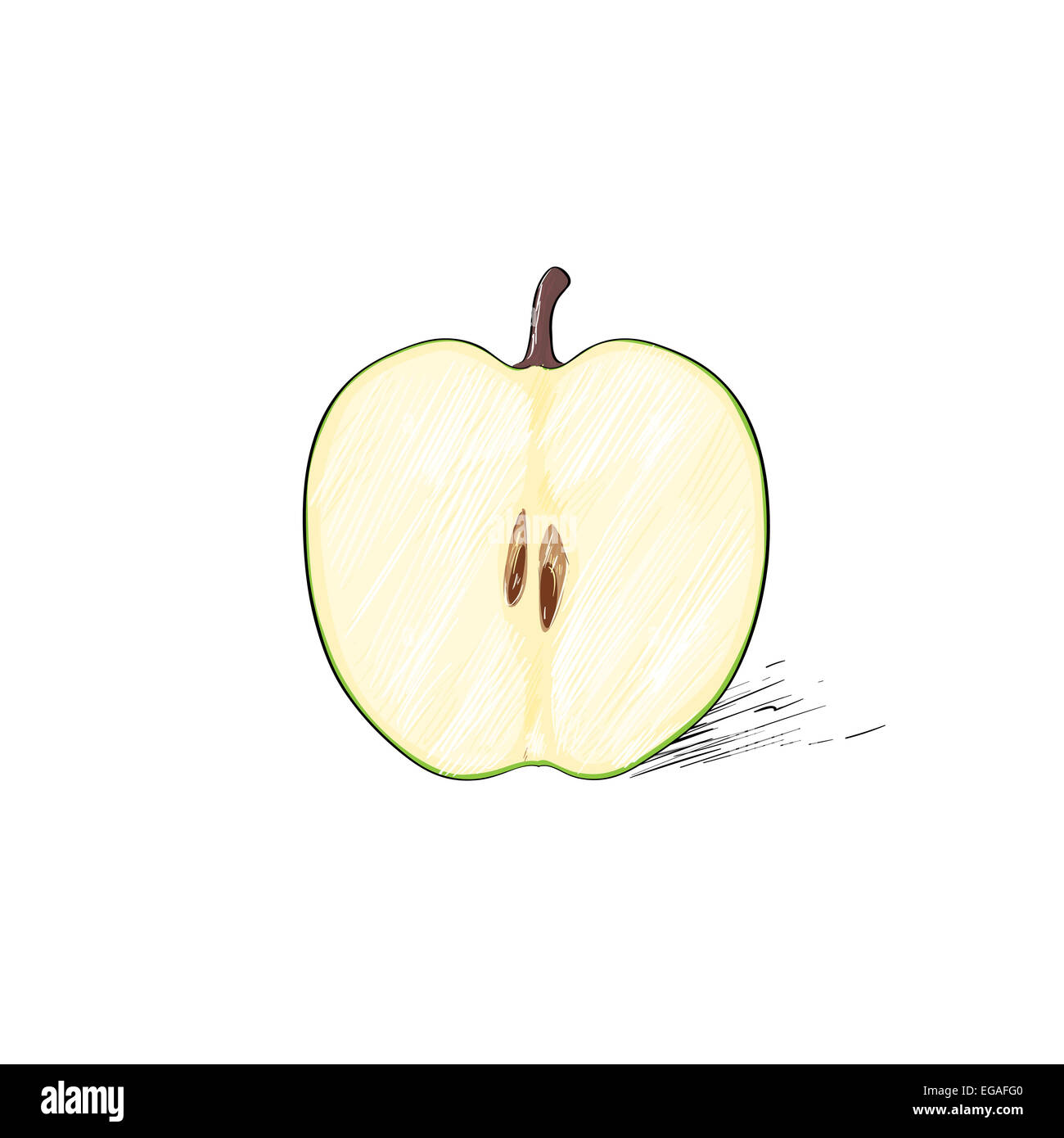 Green Cut Half Apple Sketch Draw Isolated Over White Stock Photo