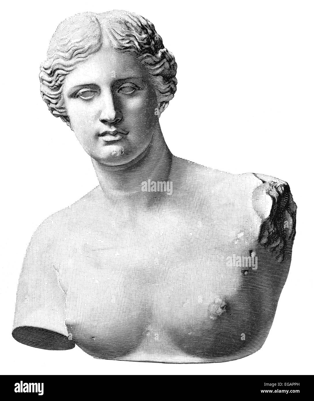 Aphrodite of Milos or Venus de Milo, an ancient Greek statue, - Stock Image