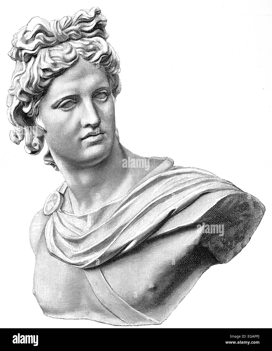 The Apollo of the Belvedere or Pythian Apollo, marble sculpture from Classical Antiquity, Stock Photo