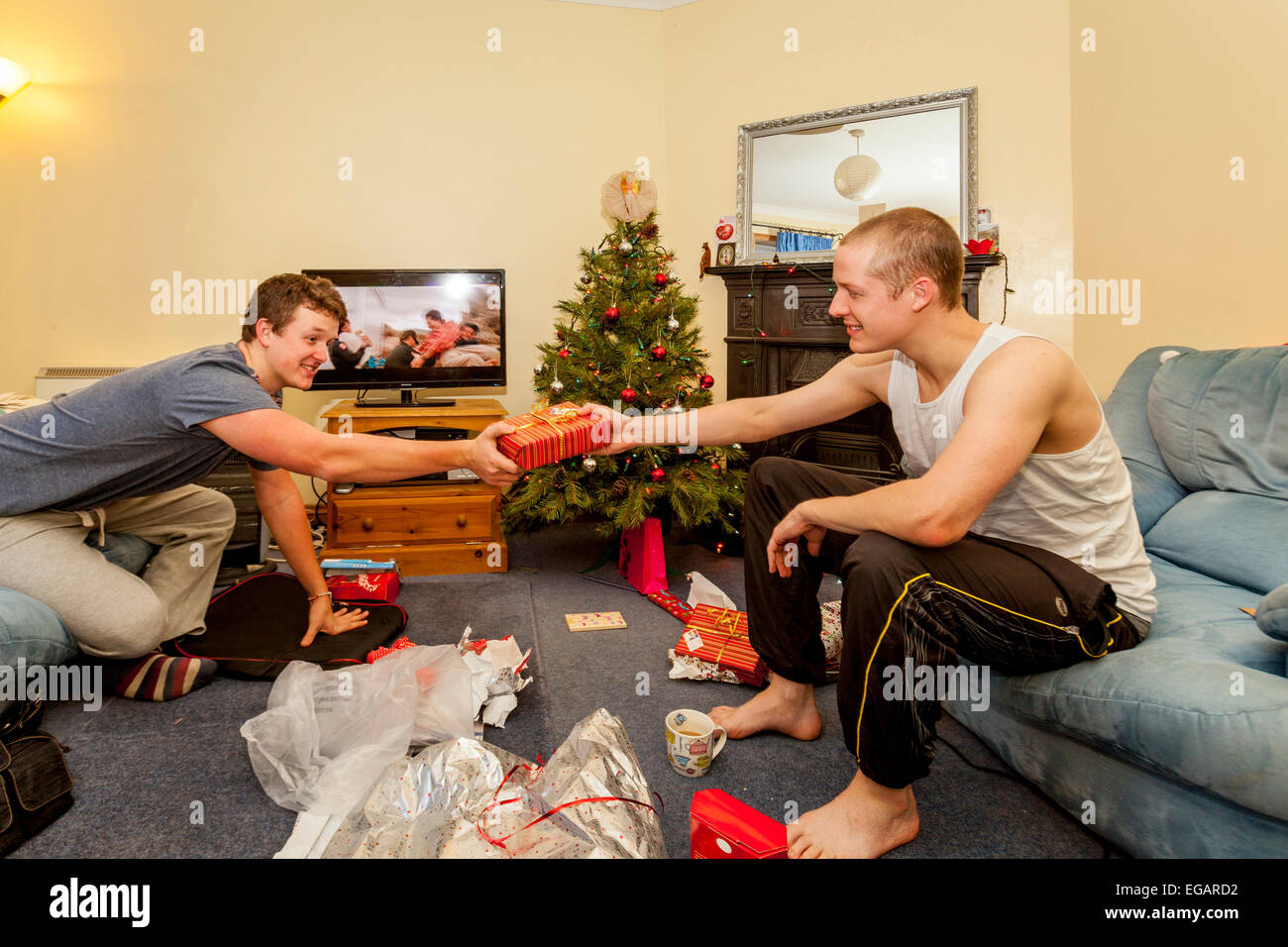 Brothers Exchanging Gifts On Christmas Day, Sussex, England - Stock Image