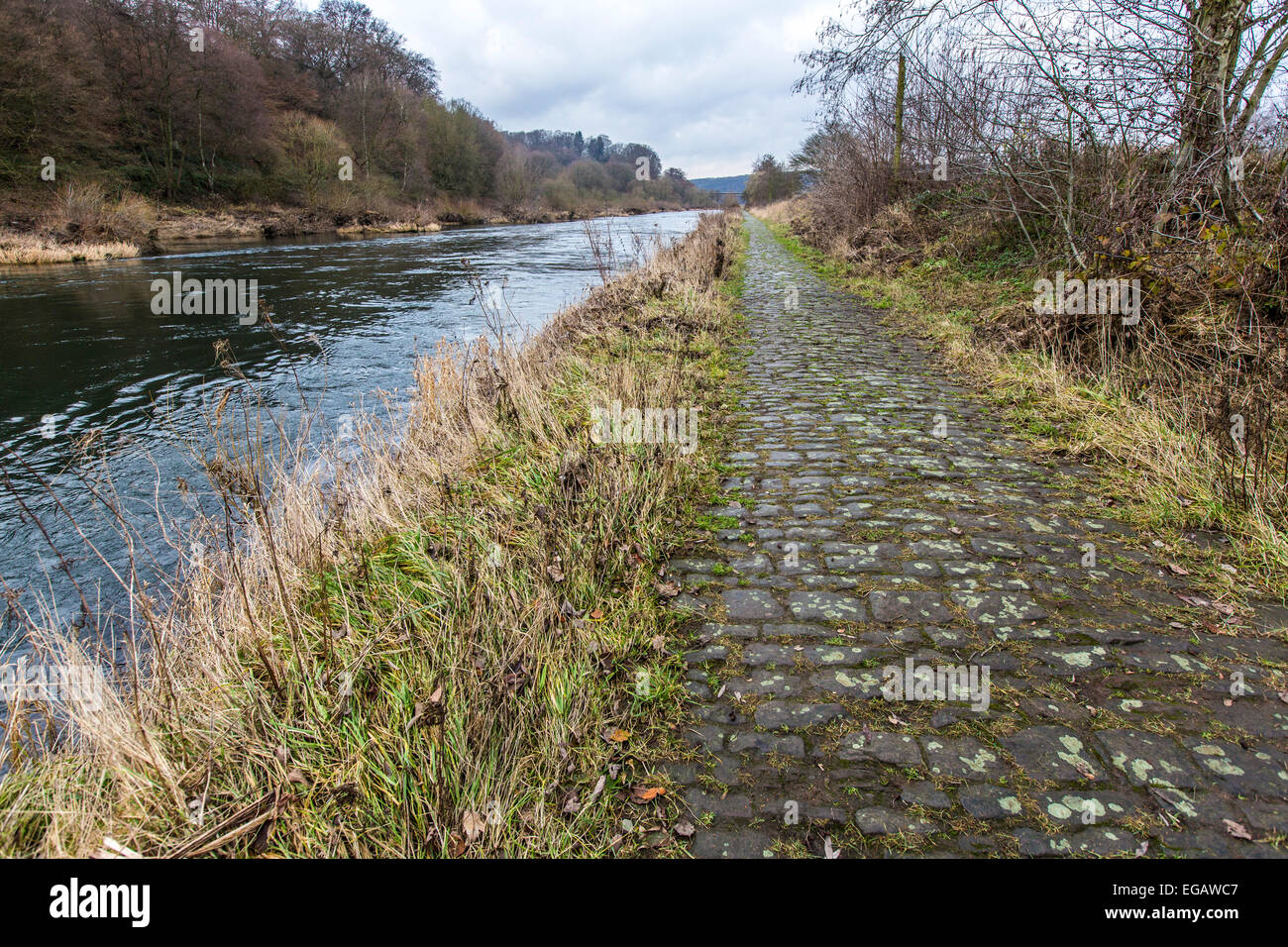 Historic towpath, along river Ruhr, hundred years ago, horses tow cargo lighter up and down the river - Stock Image