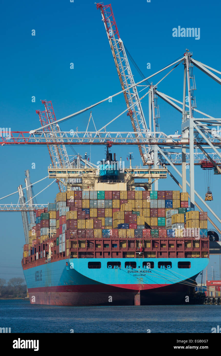 The container ship Susan Marsk being loaded in Southampton Container Terminal - Stock Image