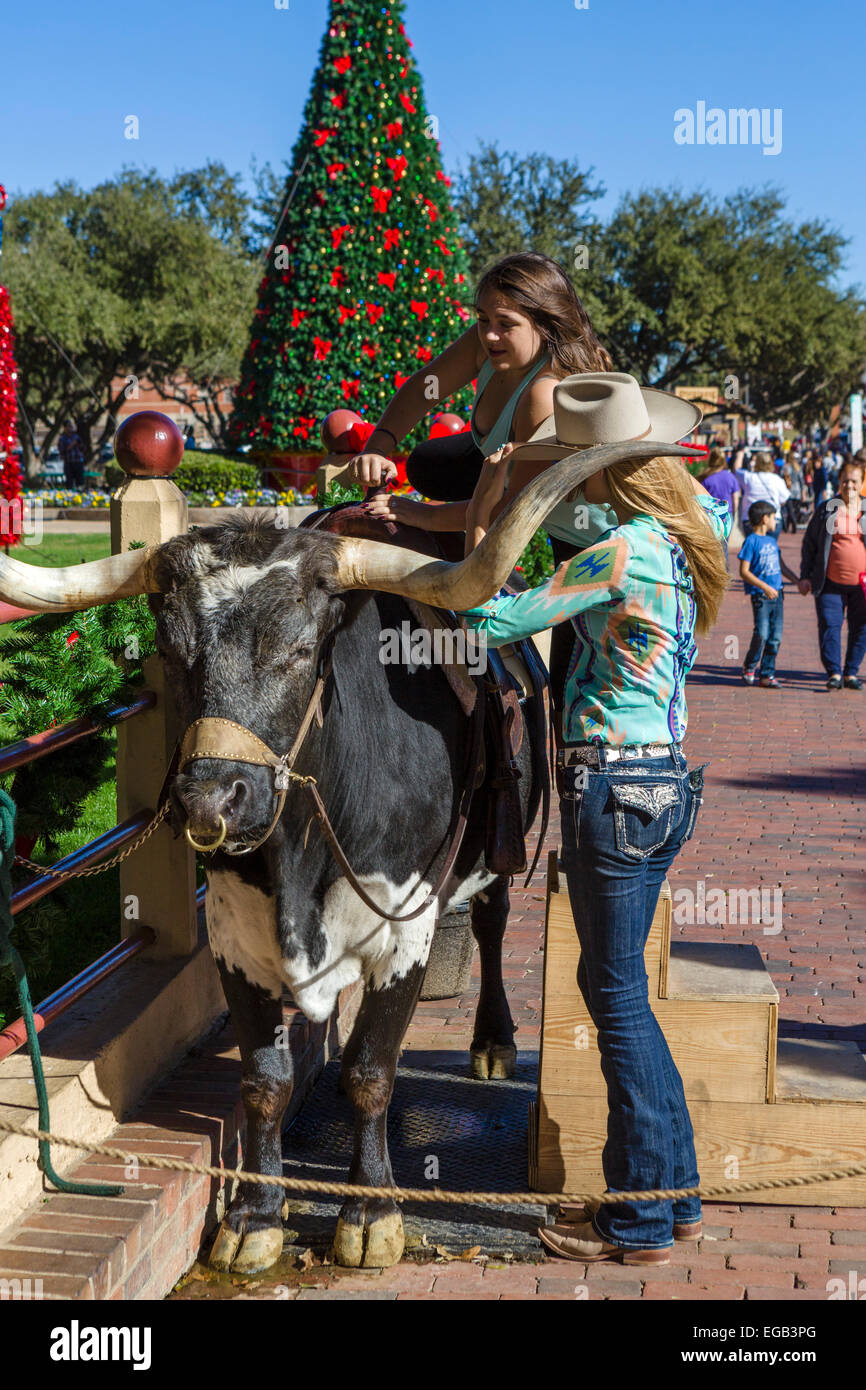 Young woman mounting a bull to have a photo taken, Exchange Avenue, Stockyards District,  Fort Worth, Texas, USA - Stock Image