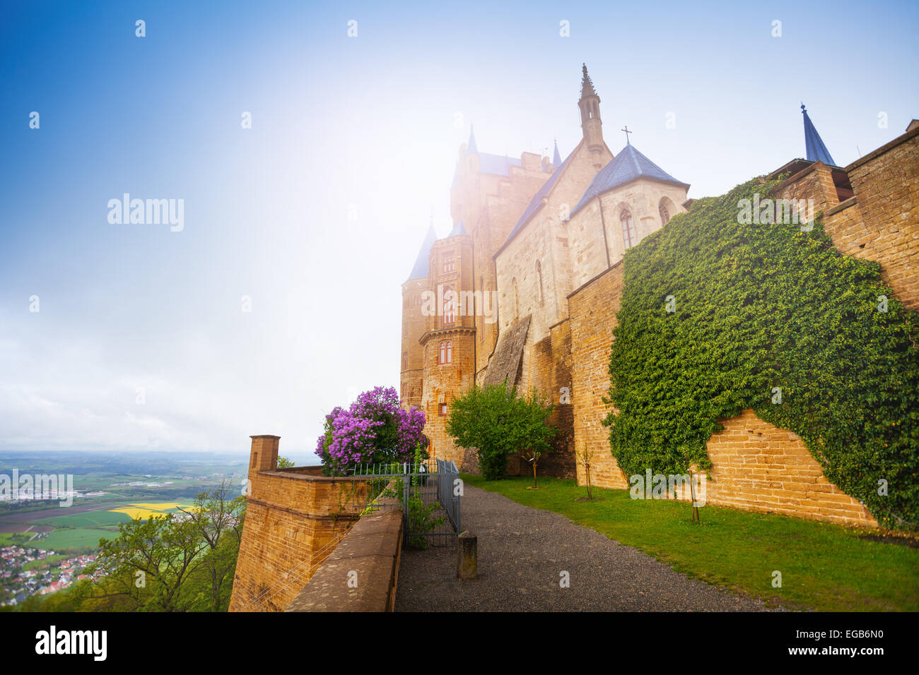 The wall with ivy of beautiful Hohenzollern castle - Stock Image