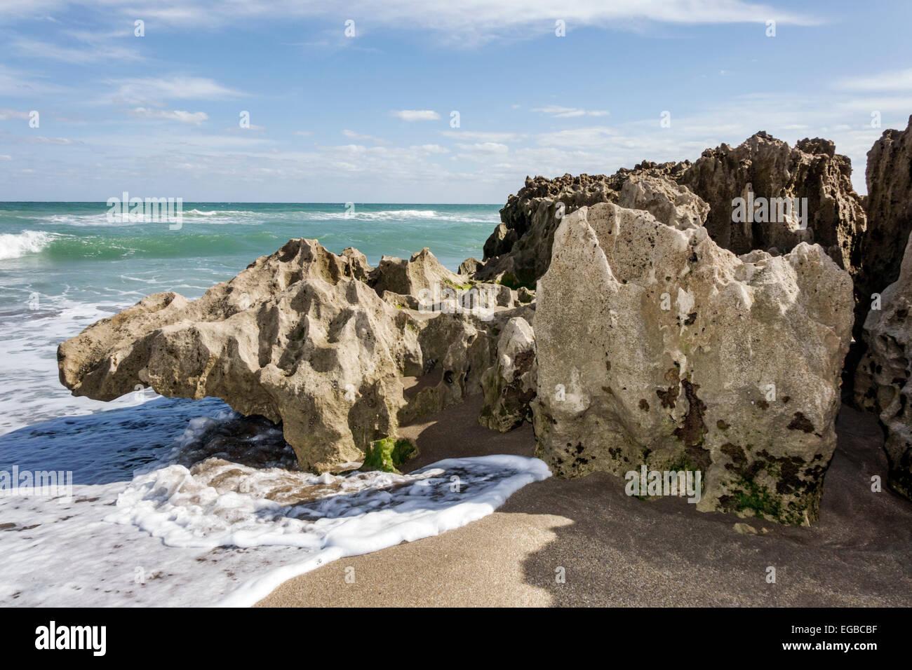 Florida, Stuart, Hutchinson Barrier Island, Ross Witham Beach, Atlantic Ocean, Anastasia geologic formation, interbedded Stock Photo
