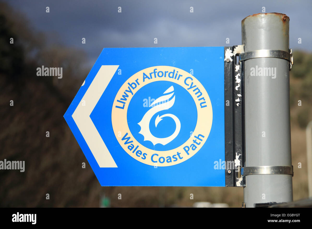 Wales Coast Path blue direction sign Caswell Bay Gower South Wales UK - Stock Image