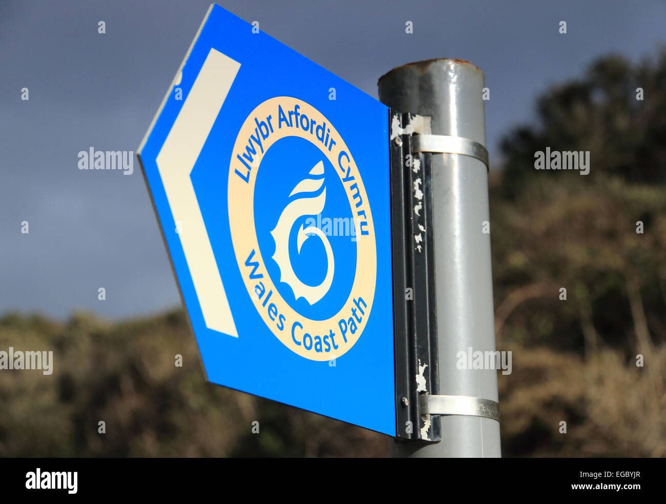 Wales Coast Path blue direction sign - Stock Image