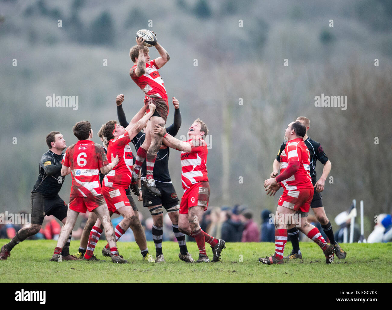 Rugby line out, players in action. - Stock Image