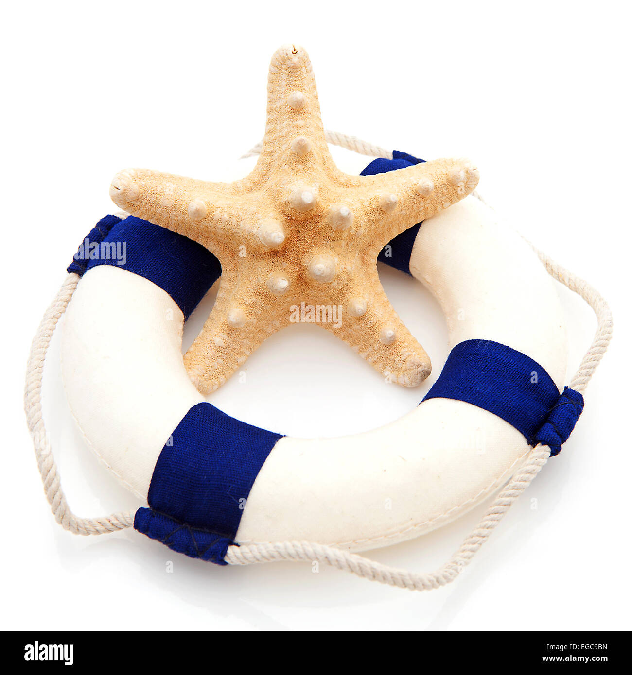 summer gear; starfish and life buoy over white background - Stock Image