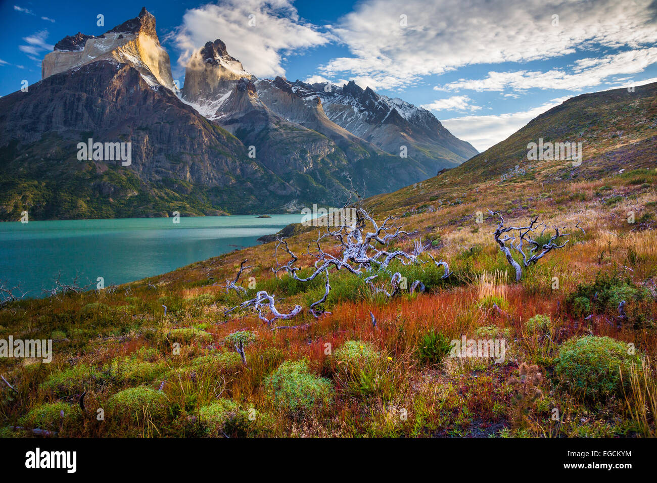 Los Cuernos towering above Lago Nordenskjold, Torres del Paine, Chilean Patagonia Stock Photo