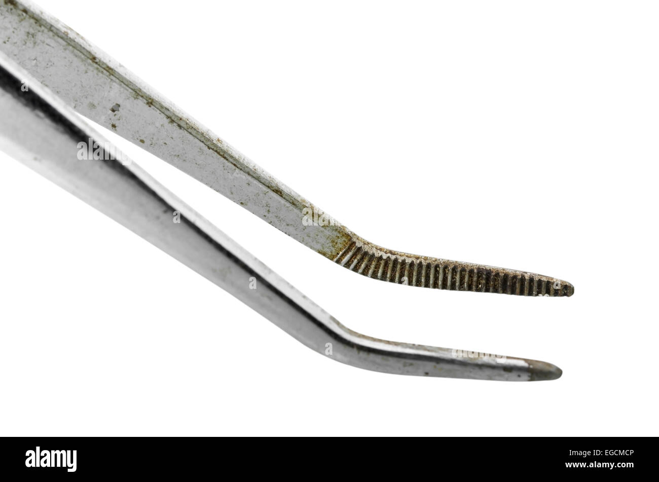 Old medical forceps with curved ends isolated over white background with clipping path - Stock Image