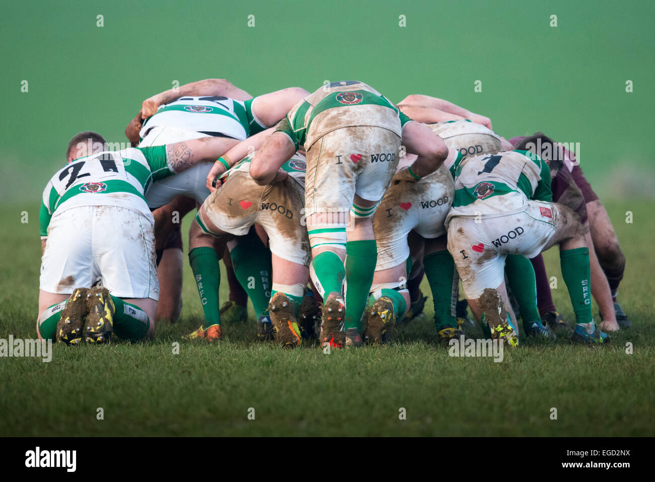Rugby scrummage. - Stock Image