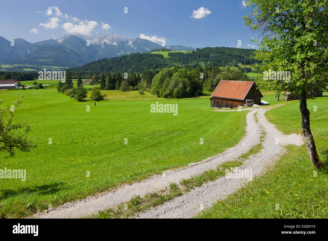 Rading near Windischgarsten, Totes Gebirge, Upper Austria, Austria Stock Photo