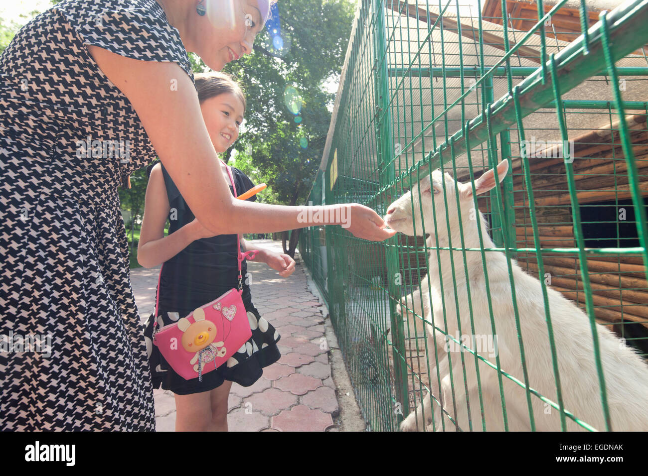 Kok Tobe zoo, Almaty, Kazakhstan Stock Photo
