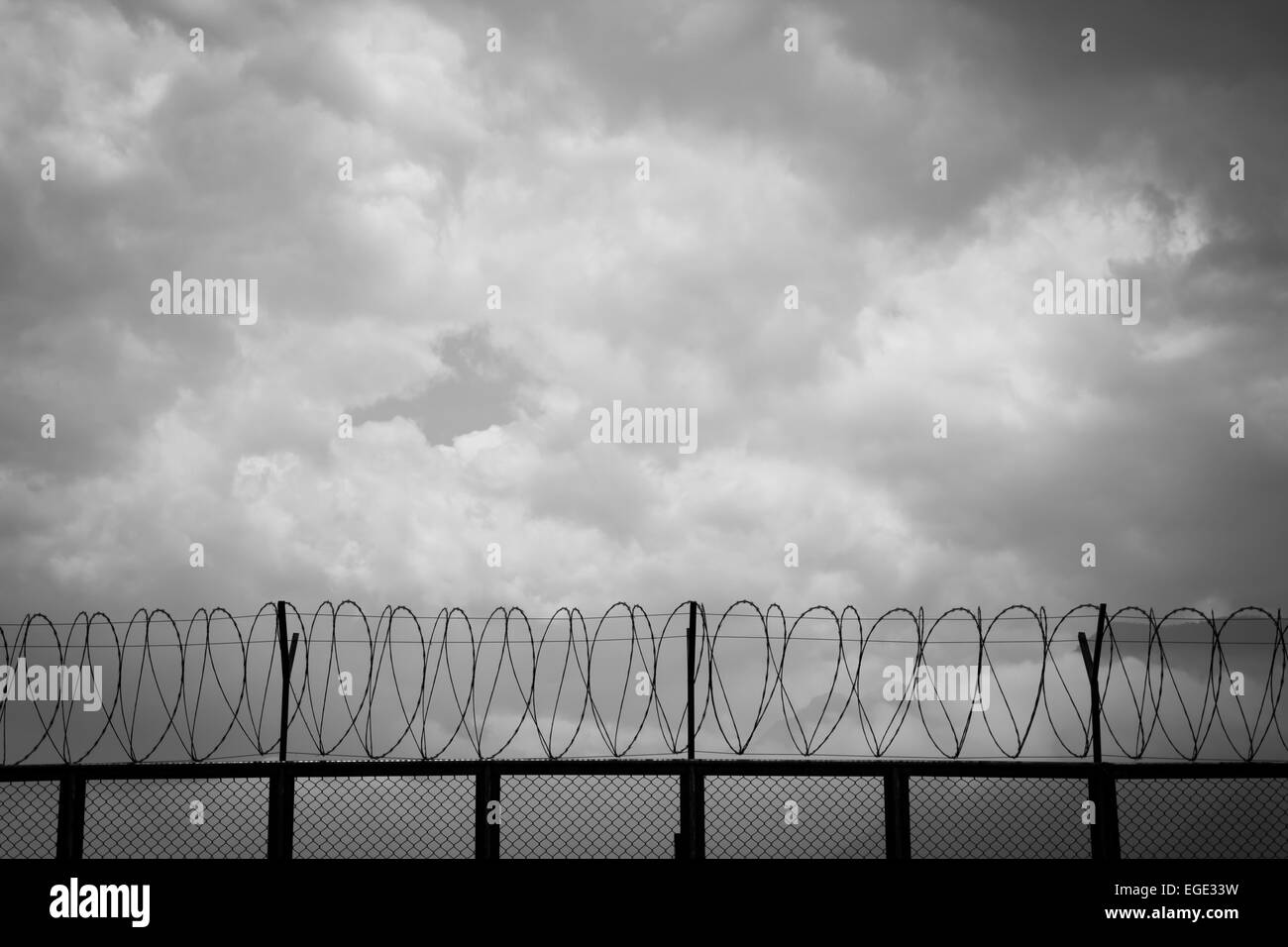 barbed wire fence - Stock Image