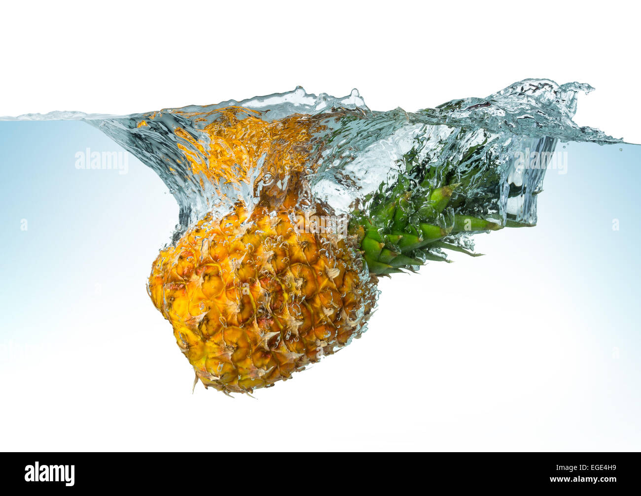 pineapple splashes into the water - Stock Image