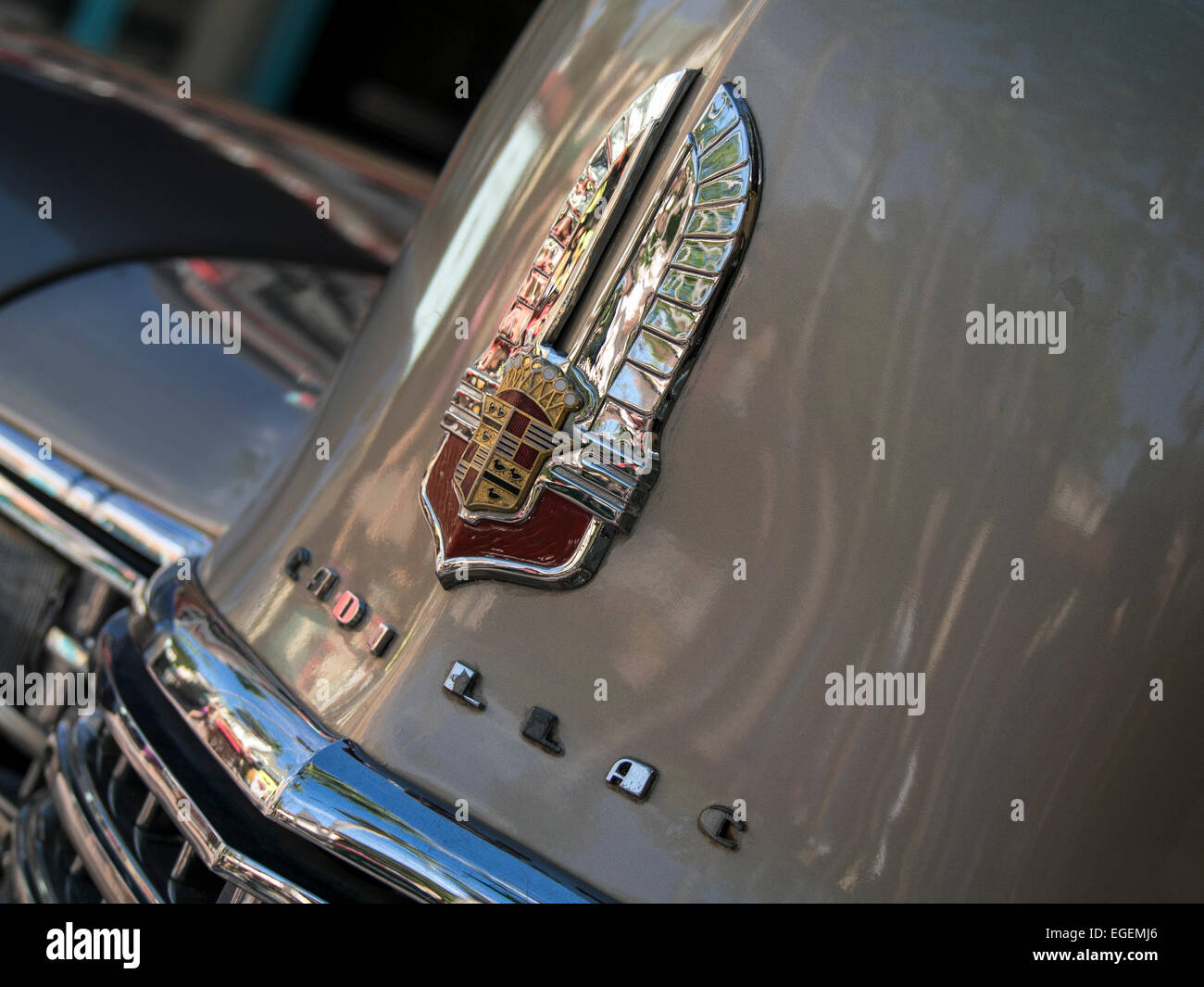 Hood and badge Detail on 1960s American Cadillac car - Stock Image
