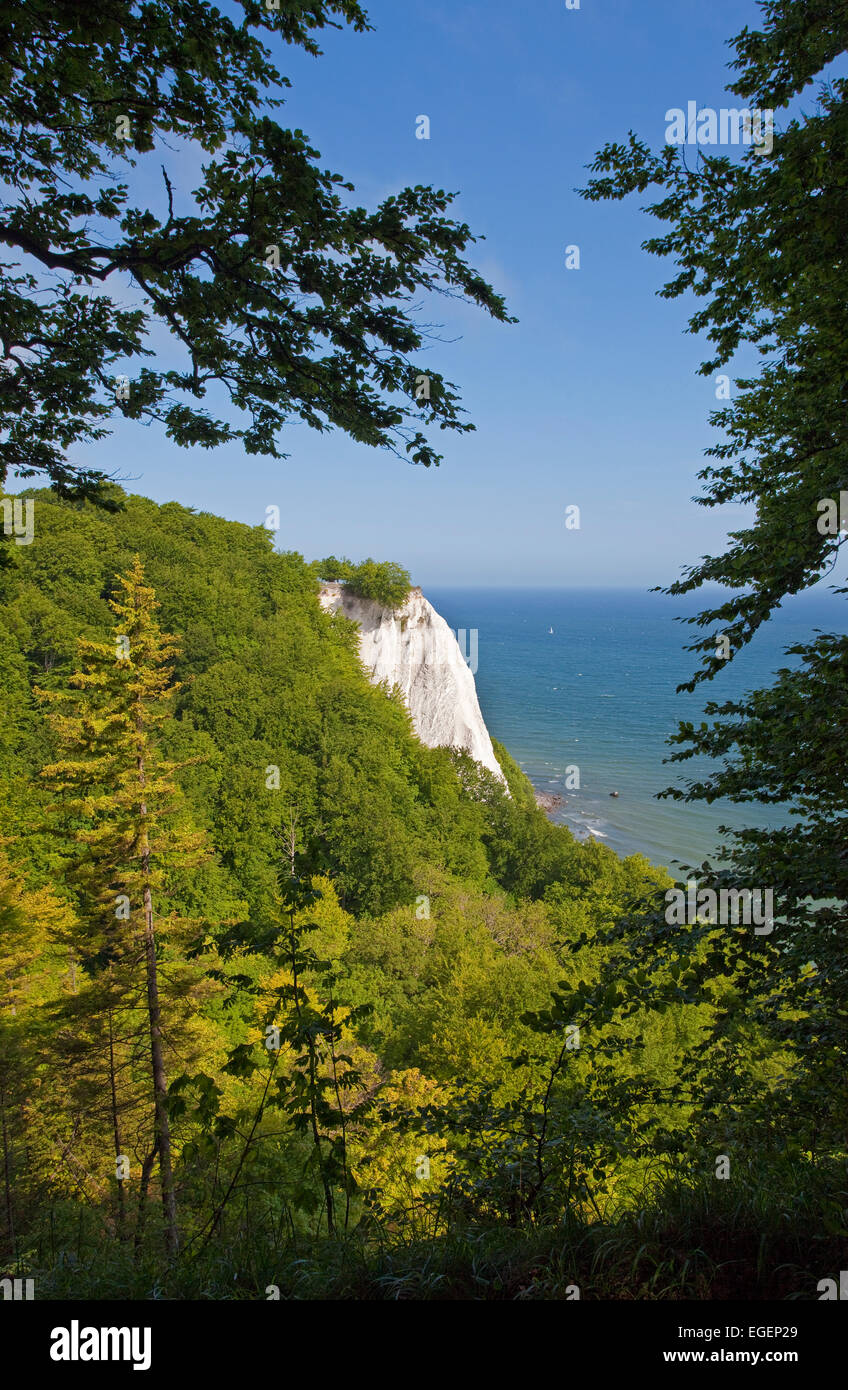 View of Königsstuhl chalk cliff, King's Chair, Jasmund National Park, Baltic Sea, Island of Rügen Stock Photo
